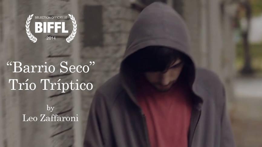 barrio-seco-trio-triptico-leo-zaffaroni-biffl-2014